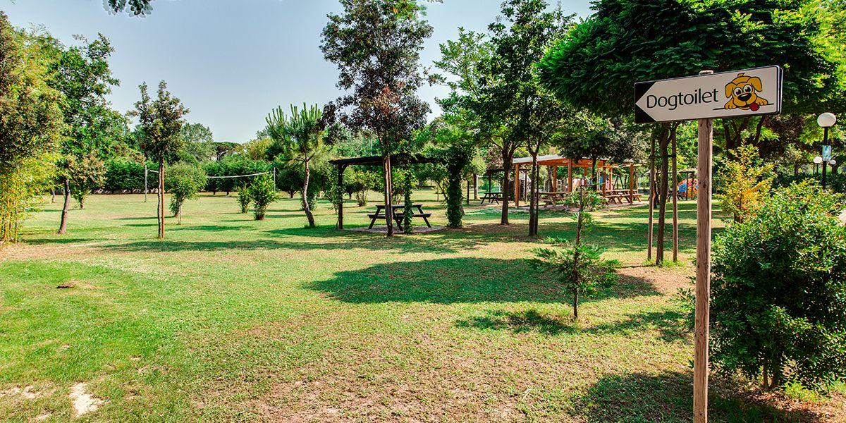 Dog friendly con area dedicata al benessere degli animali domestici - Aparthotel Costa Paradiso Lid - Aparthotel Costa Paradiso Lido Adriano